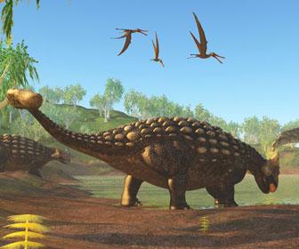 アンキロサウルスのイラスト
