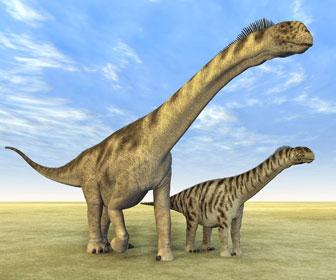 カマラサウルスのイラスト