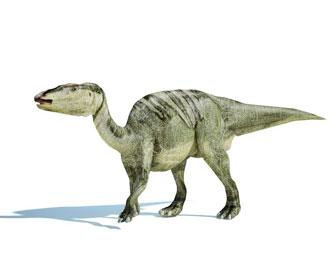 エドモントサウルスのイラスト