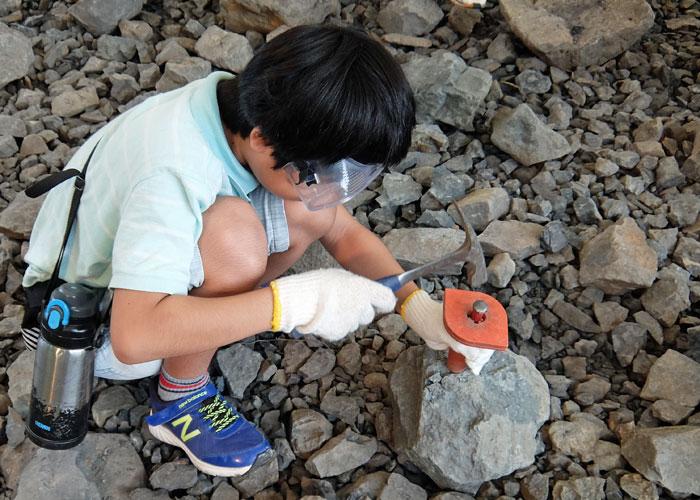 福井県立恐竜博物館の野外博物館での化石発掘体験