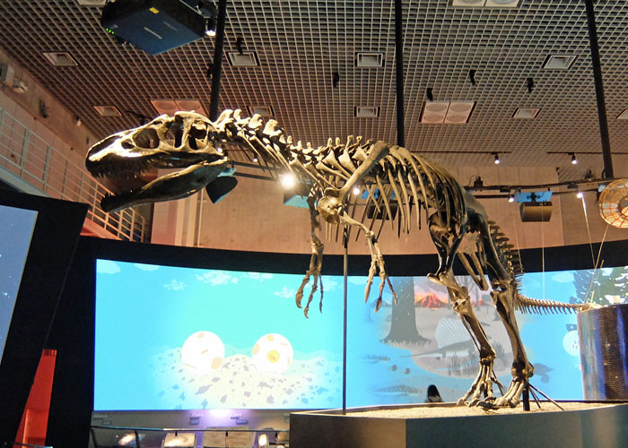 国立科学博物館の地球史ナビゲーターにあるアロサウルスの全身骨格