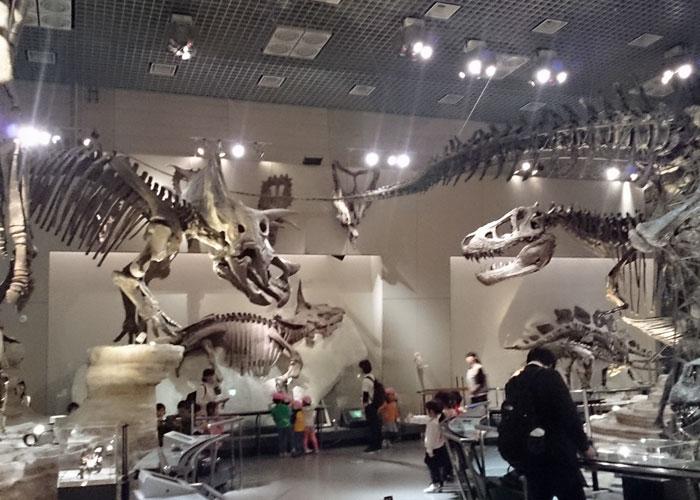 国立科学博物館の地球館地下1階、恐竜の展示室