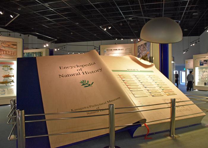 神奈川県立生命の星・地球博物館のジャンボブックのもくじ