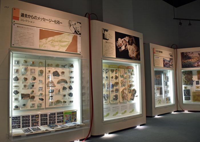 神奈川県立生命の星・地球博物館のジャンボブック