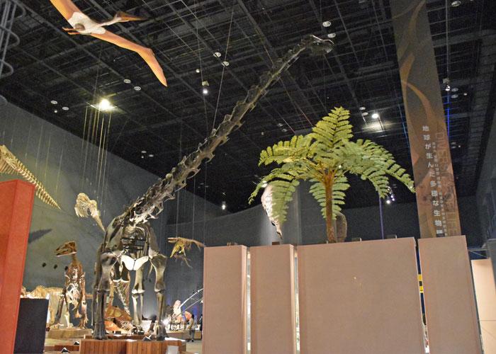 神奈川県立生命の星・地球博物館のディプロドクスの全身骨格