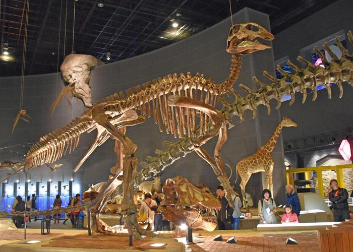 エドモントサウルスの実物全身骨格(神奈川県立生命の星・地球博物館)