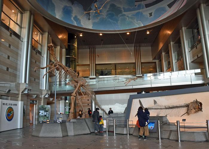 神奈川県立生命の星・地球博物館のエントランスホール