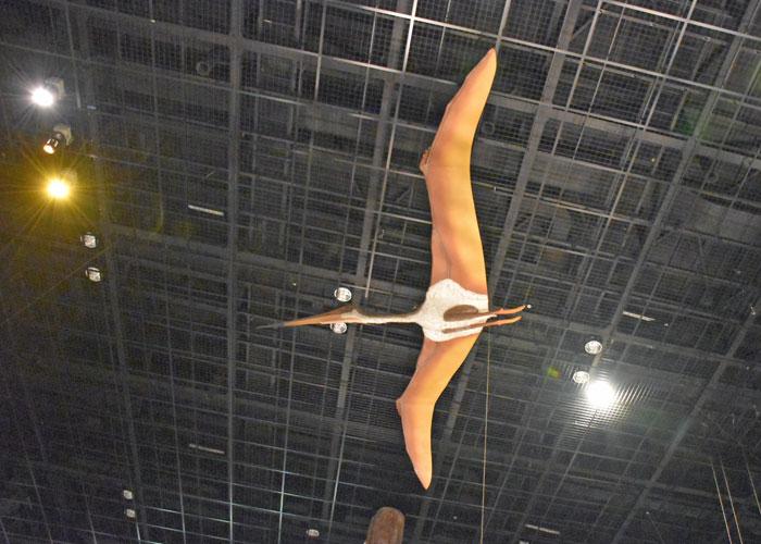 神奈川県立生命の星・地球博物館のケツァルコアトルスの復元模型