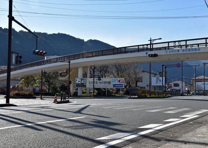 国道1号線「地球博物館前」交差点の歩道橋