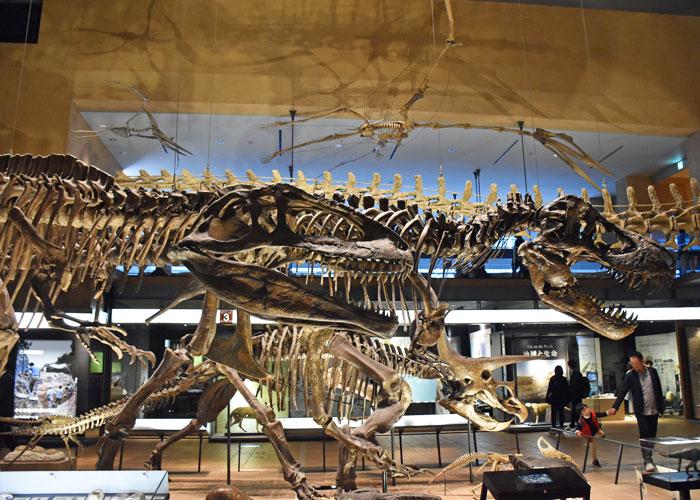 いのちのたび博物館の恐竜と翼竜