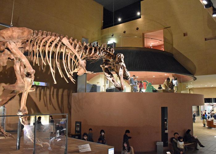 1階から見た北九州市立いのちのたび博物館のチルドレンミュージアムの様子