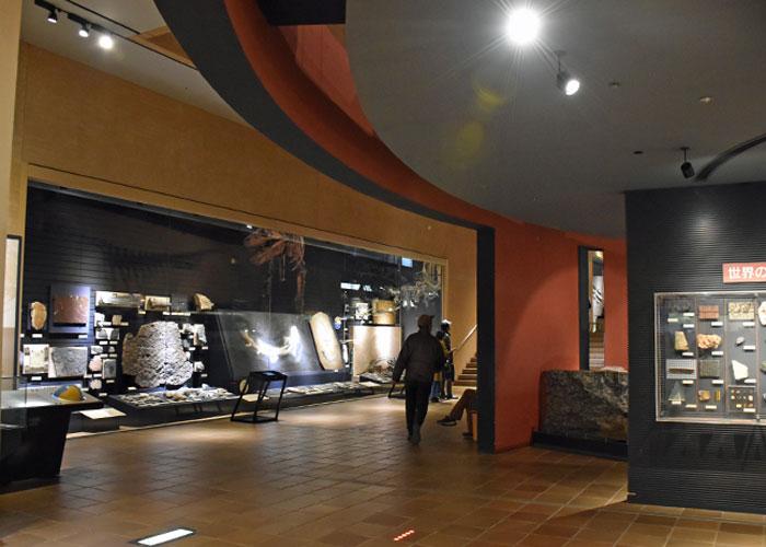 北九州市立いのちのたび博物館の入口