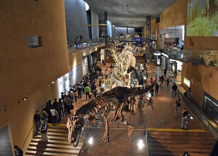ティラノサウルスなどを3階から見下ろせる北九州市立いのちのたび博物館のアースモール