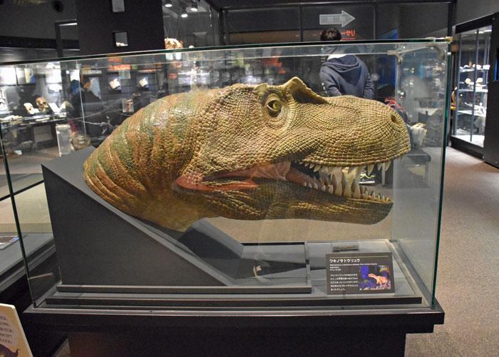北九州市立いのちのたび博物館のエンバイラマ館