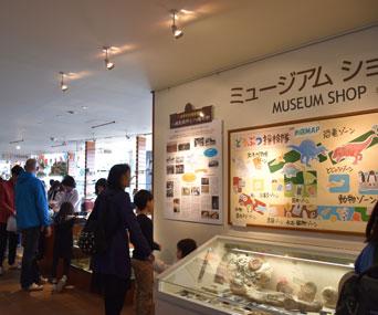いのちのたび博物館のミュージアムショップ