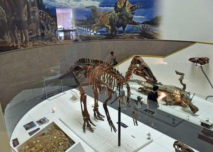 エドモントサウルスの展示室:豊橋市自然史博物館