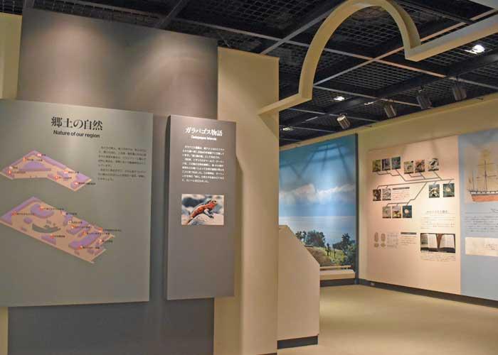 豊橋市自然史博物館の郷土の自然展示室
