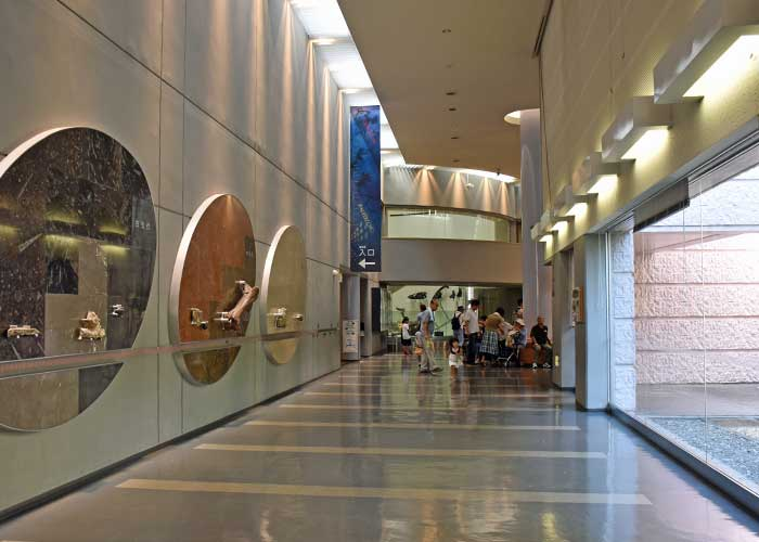 豊橋市自然史博物館のイントロホール