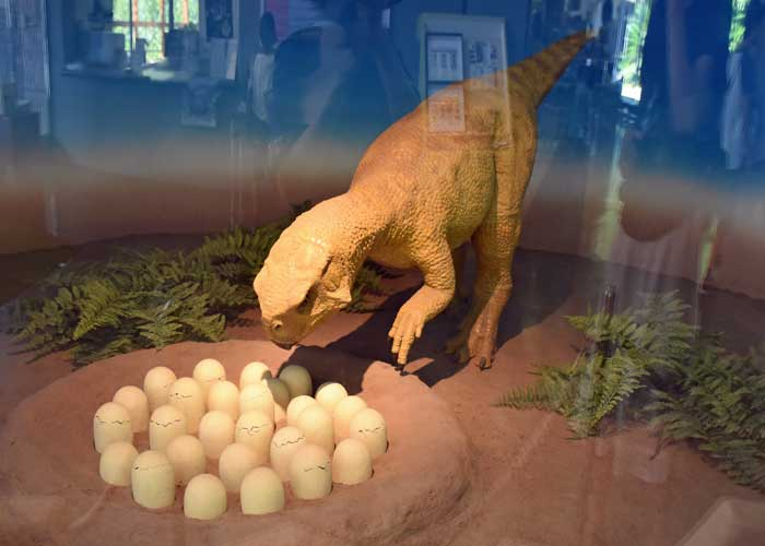 プシッタコサウルスの動く復元模型と卵:豊橋市自然史博物館