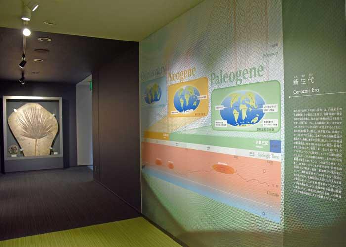 豊橋市自然史博物館の新生代展示室入り口