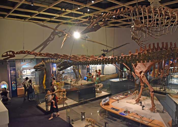 豊橋市自然史博物館の中生代展示室の様子:ユアンモサウルスの全身骨格など