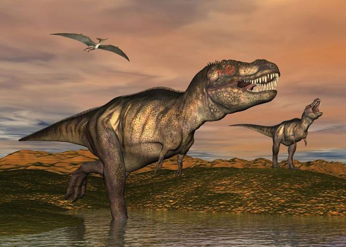 2体のティラノサウルスと翼竜のイラスト